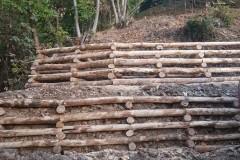 Palificata_doppia_legno_castagno